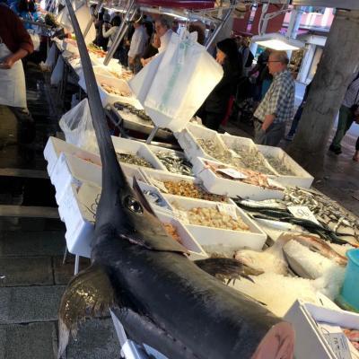 frischer Fisch am Rialtomarkt