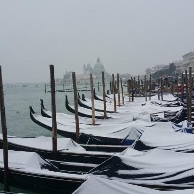 gondolas covered in snow