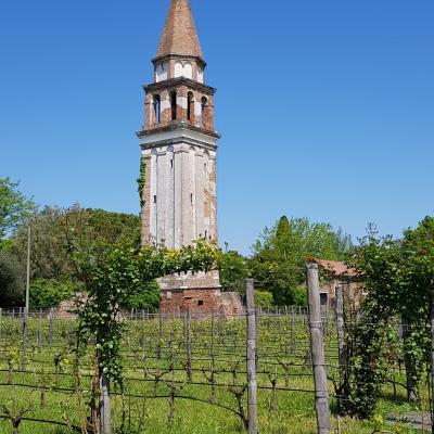 Weingut im alten Klostergarten auf Mazzorbo