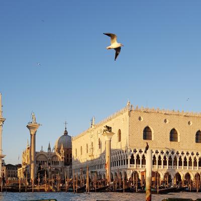 Ankunft in Venedig - der Dogenpalast